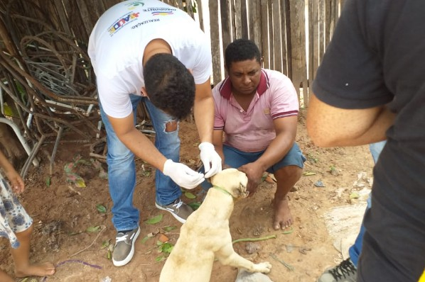 Saúde promove treinamento com agentes para implantação de Inquérito Canino